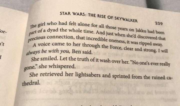 , Rivelate le ultime parole di Ben a Rey, nella novelization di Episodio IX: l'Ascesa di Skywalker, Star Wars Addicted