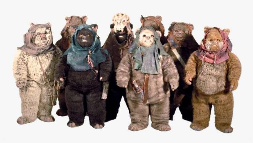 gli Ewok, Le specie della Galassia: gli Ewok – Guida al Canon, Star Wars Addicted